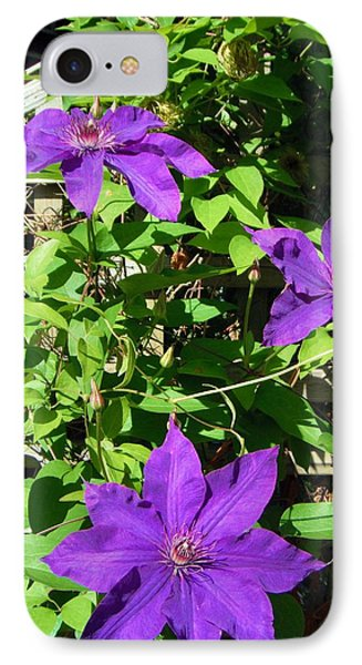 IPhone Case featuring the photograph Climbing Clematis by Susan Carella