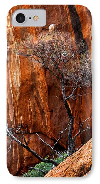 Clinging To Life IPhone Case by Mike  Dawson