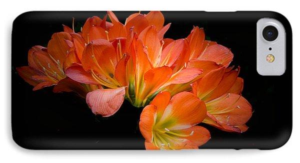 Clivia Flora IPhone Case by Bruce Pritchett