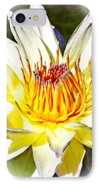 Close Encounters 8x10c 1_pe IPhone Case by Marty Koch