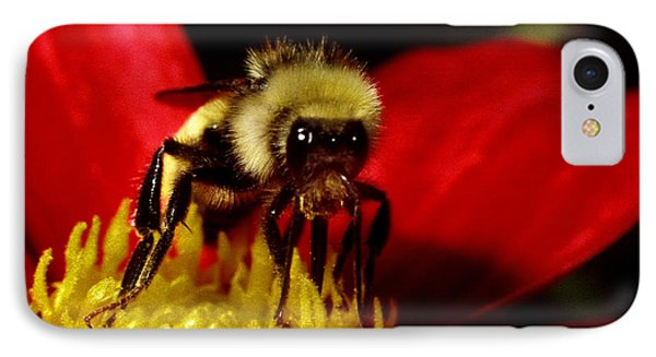 Close Up Bee IPhone Case