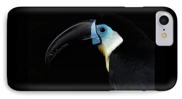 Close-up Channel-billed Toucan, Ramphastos Vitellinus, Isolated On Black IPhone Case by Sergey Taran