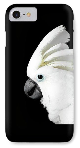 Close-up Crested Cockatoo Alba, Umbrella, Indonesia, Isolated On Black Background IPhone Case by Sergey Taran