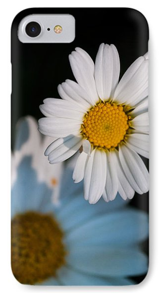 Close Up Daisy IPhone Case