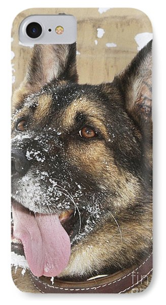 Close-up Of A Military Working Dog Phone Case by Stocktrek Images