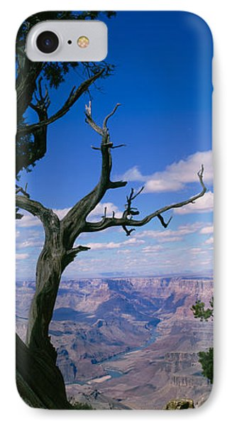 Close-up Of A Tree At The Edge IPhone Case by Panoramic Images