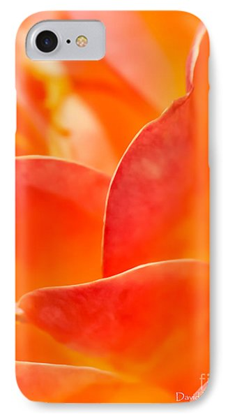 IPhone Case featuring the photograph Close-up Of An Orange Rose Flower by David Perry Lawrence