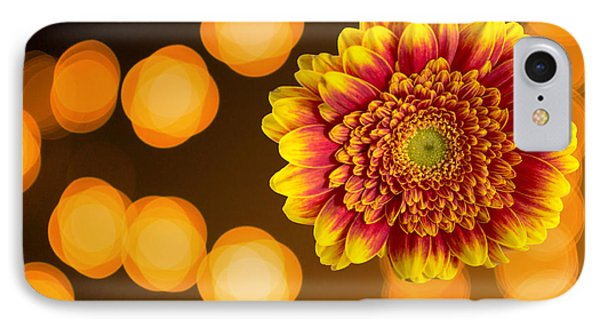 Close-up Of Beautiful Orange And Red Chrysanthemum IPhone Case by John Williams