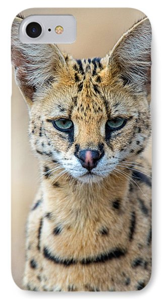 Close-up Of Serval Leptailurus Serval IPhone Case by Panoramic Images