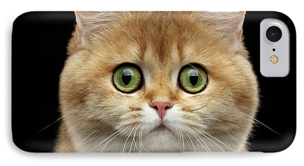 Cat iPhone 7 Case - Close-up Portrait Of Golden British Cat With Green Eyes by Sergey Taran