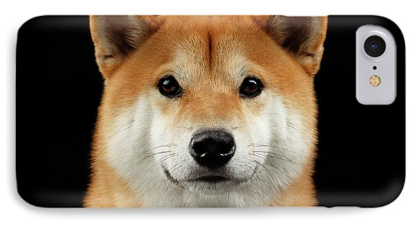 Close-up Portrait Of Head Shiba Inu Dog, Isolated Black Background IPhone 7 Case by Sergey Taran