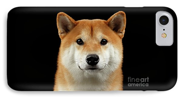 Close-up Portrait Of Head Shiba Inu Dog, Isolated Black Background IPhone Case by Sergey Taran