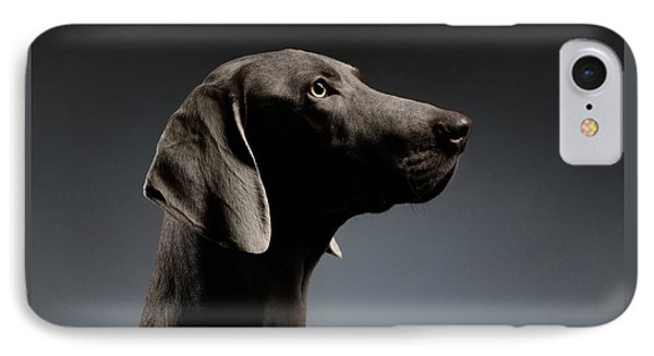 Close-up Portrait Weimaraner Dog In Profile View On White Gradient IPhone Case by Sergey Taran