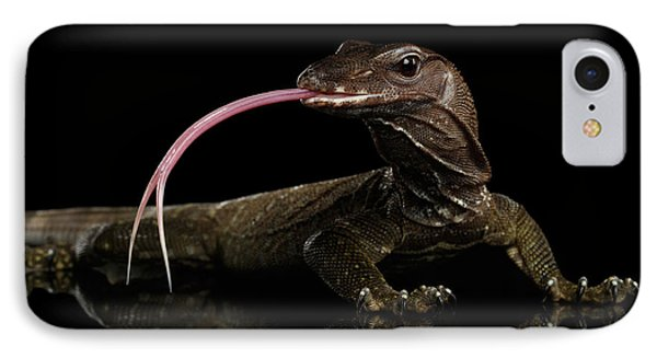 Close-up Varanus Rudicollis Isolated On Black Background IPhone Case by Sergey Taran