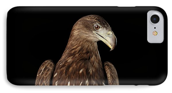 Close-up White-tailed Eagle, Birds Of Prey Isolated On Black Bac IPhone Case