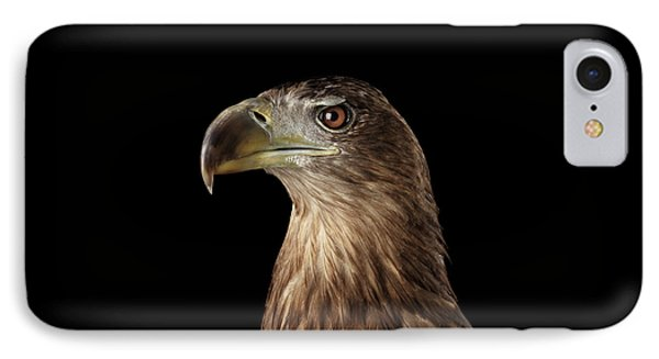 Close-up White-tailed Eagle, Birds Of Prey Isolated On Black Background IPhone Case