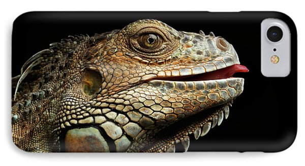 Close-upgreen Iguana Isolated On Black Background IPhone Case by Sergey Taran