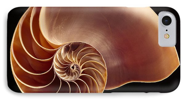 Close View Of Chambered Nautilus Phone Case by Victor R. Boswell, Jr