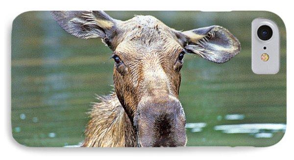 Close Wet Moose IPhone Case