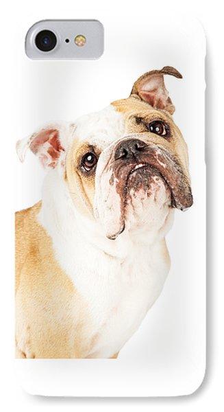 Closeup Adorable English Bulldog Looking Up IPhone Case