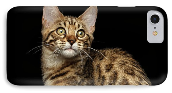 Closeup Bengal Kitty On Isolated Black Background IPhone 7 Case by Sergey Taran