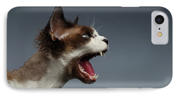 Cat iPhone 7 Case - Closeup Devon Rex Hisses In Profile View On Gray  by Sergey Taran