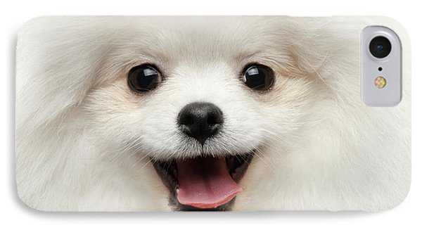 Closeup Furry Happiness White Pomeranian Spitz Dog Curious Smiling IPhone Case by Sergey Taran
