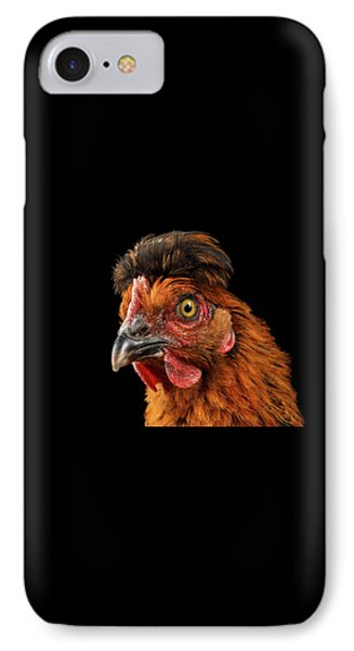 Closeup Ginger Chicken Isolated On Black Background In Profile View IPhone Case by Sergey Taran