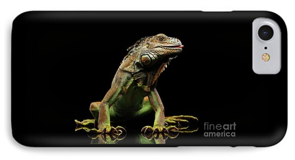 Closeup Green Iguana Isolated On Black Background IPhone Case by Sergey Taran