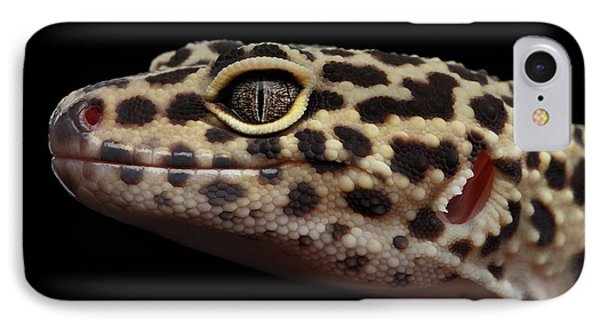 Closeup Head Of Leopard Gecko Eublepharis Macularius Isolated On Black Background IPhone 7 Case by Sergey Taran