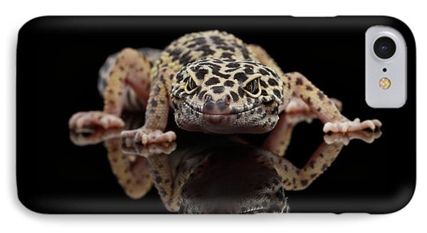 Closeup Leopard Gecko Eublepharis Macularius Isolated On Black Background, Front View IPhone 7 Case by Sergey Taran