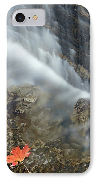 Closeup Maple Leaf And Decew Falls, St IPhone Case by Darwin Wiggett