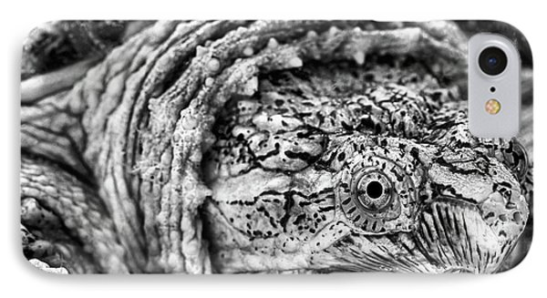 Closeup Of A Snapping Turtle IPhone Case