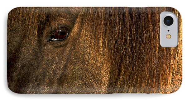 Closeup Of An Icelandic Horse #2 IPhone Case by Stuart Litoff