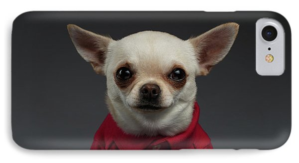 Closeup Portrait Chihuahua Dog In Stylish Clothes. Gray Background IPhone Case by Sergey Taran