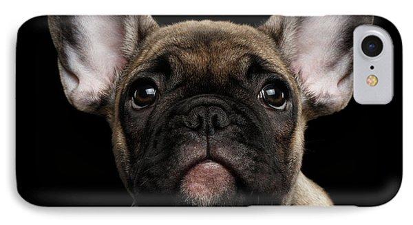 Closeup Portrait French Bulldog Puppy, Cute Looking In Camera IPhone 7 Case
