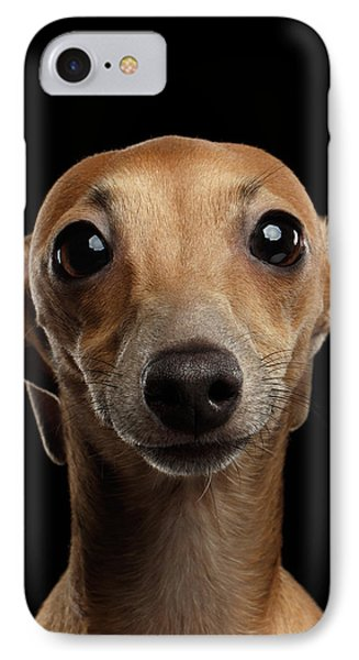 Closeup Portrait Italian Greyhound Dog Looking In Camera Isolated Black IPhone 7 Case