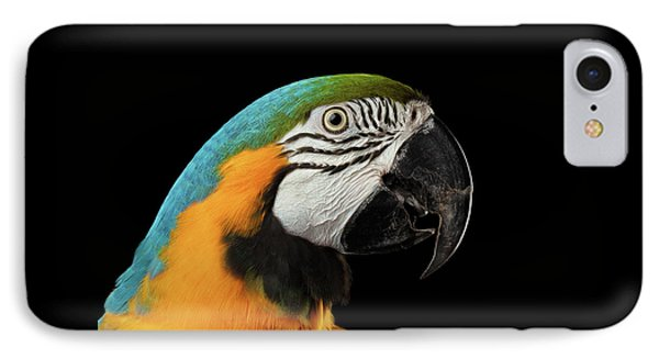 Closeup Portrait Of A Blue And Yellow Macaw Parrot Face Isolated On Black Background IPhone Case by Sergey Taran
