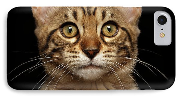 Closeup Portrait Of Bengal Kitty Isolated Black Background IPhone 7 Case by Sergey Taran