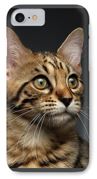 Closeup Portrait Of Bengal Male Kitty On Dark Background IPhone Case by Sergey Taran
