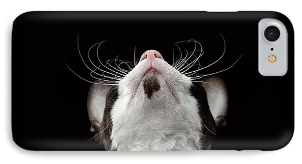 Cat iPhone 7 Case - Closeup Portrait Of Cornish Rex Looking Up Isolated On Black  by Sergey Taran