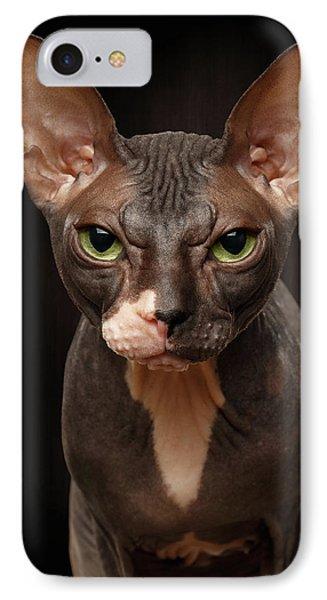 Closeup Portrait Of Grumpy Sphynx Cat Front View On Black  IPhone Case by Sergey Taran
