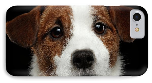 Closeup Portrait Of Jack Russell Terrier Dog On Black IPhone Case by Sergey Taran