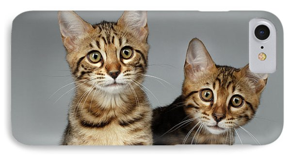 Closeup Portrait Of Two Bengal Kitten On White Background IPhone 7 Case by Sergey Taran