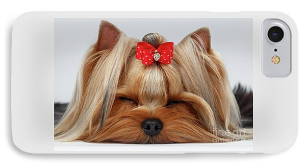 Closeup Yorkshire Terrier Dog With Closed Eyes Lying On White  IPhone 7 Case by Sergey Taran