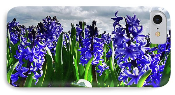 Clouds Over The Purple Hyacinth Field IPhone Case by Mihaela Pater