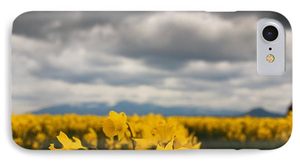 IPhone Case featuring the photograph Cloudy With A Chance Of Daffodils by Erin Kohlenberg