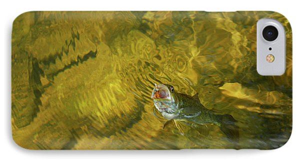 Clouser Smallmouth Phone Case by Randy Bodkins
