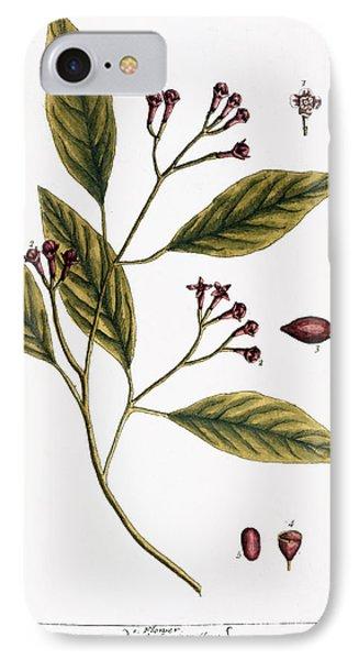 Cloves, 1735 Phone Case by Granger