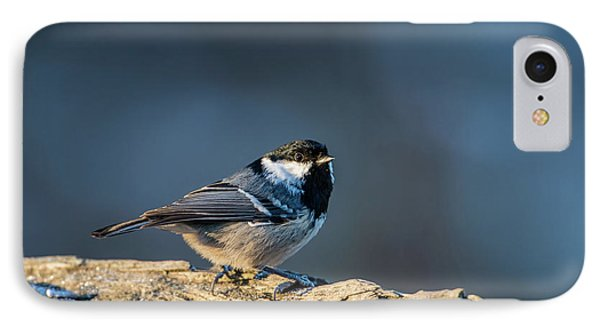 IPhone Case featuring the photograph Coal Tit's Colors by Torbjorn Swenelius